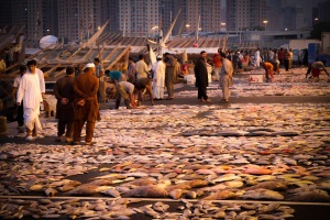 Ajman Fish Market