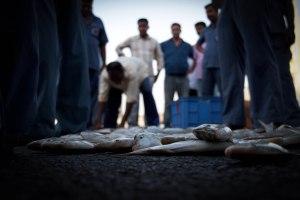Fish market Traders