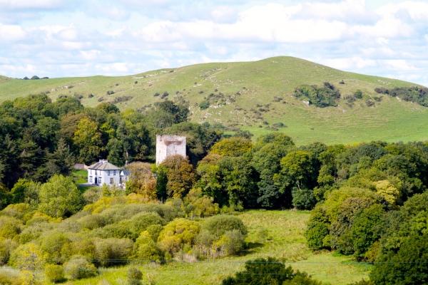 Ryans Hse & Bouchers Castle